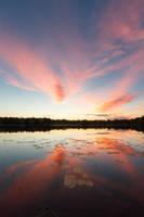 Summer sunset by Antz0