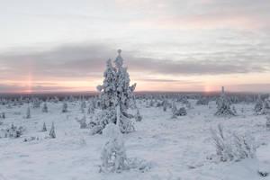 Frostland by Antz0