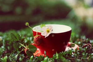 strawberry swing by Herzlich-t