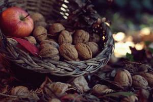 autumn magic by Herzlich-t
