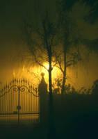Fog by tropie