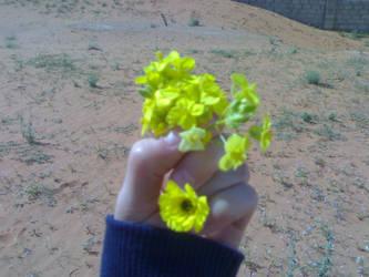 Hand by misshailah