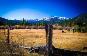 Along Emigrant Trail by StephGabler