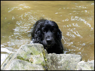 Look Ma, I'm Swimming by Maadob