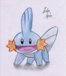 Mudkip! by ChristARG