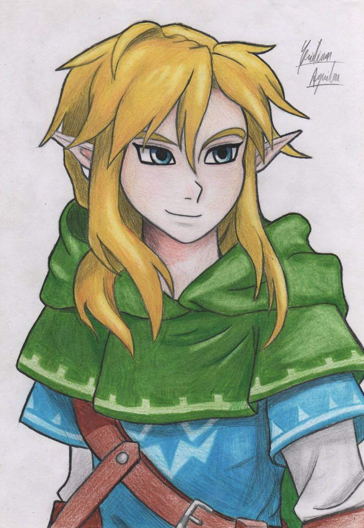 Link - Breath of the Wild by ChristARG