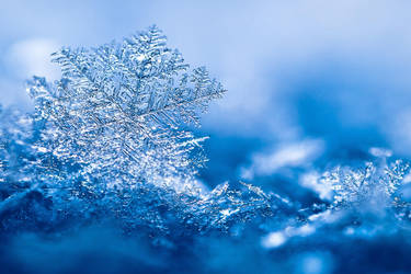 snowflake by Pete1987