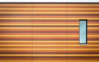 orange stripes by Pete1987