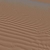 Sahara by Aspartam