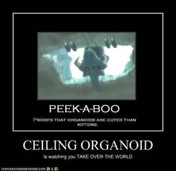 Ceiling Organoid by Vert8472