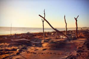 Sunset shenanigans by CathleenTarawhiti