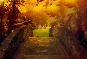 The Bridge by CathleenTarawhiti