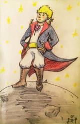 Petit prince - Tintintintiiiintiiintiiintintintiii by DyDiKing