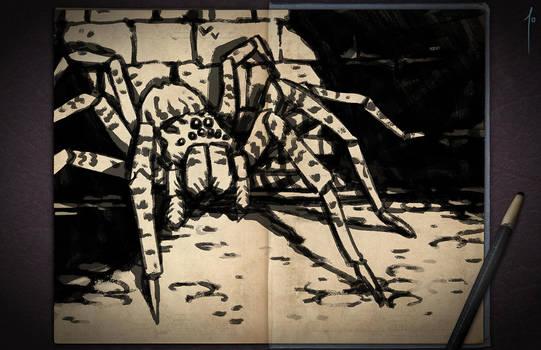 Jester's Sketchbook - spread 13 by JoannaJohnen
