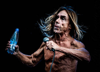 IGGY AND THE STOOGES V by AmCreationss