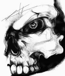 Quick Skull Sketch by theR3AP3R