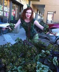 Poison Ivy- ID by Kewlink