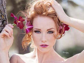 Ginger by Donna-Lynn