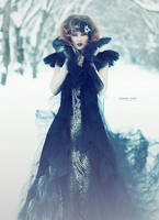 Gothic Beauty by Donna-Lynn