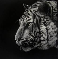Night stalker black and white by rasberry6