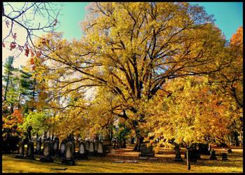 Beauty of a cemetery by MistressVampy
