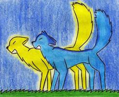 The wolf's eye by Kooskia