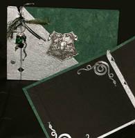 HP book- Slytherin by mizutamari