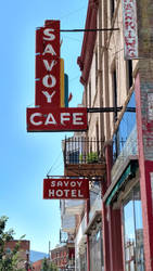 the Savoy by eclecticprismstudios