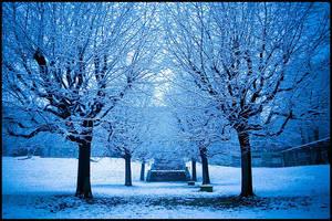 Winter wonderland 2 by mjagiellicz