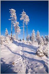 Winter classic by mjagiellicz