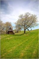 Spring house by mjagiellicz