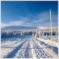 Winter classic 2 by mjagiellicz
