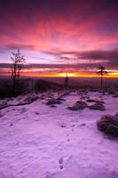 Ruprechticky Spicak sunrise by mjagiellicz