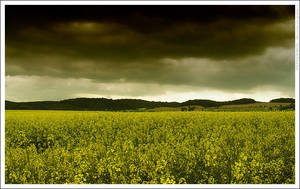 Before storm by mjagiellicz