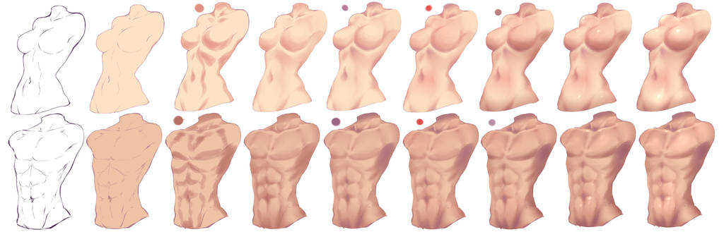 How I paint Torso - Female and Male by rika-dono