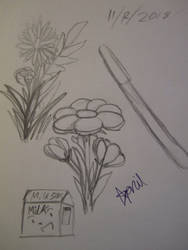 Random objects and flowers by SuperMapleGirl