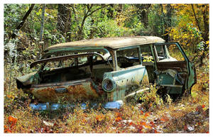 The Family Station Wagon by TheMan268