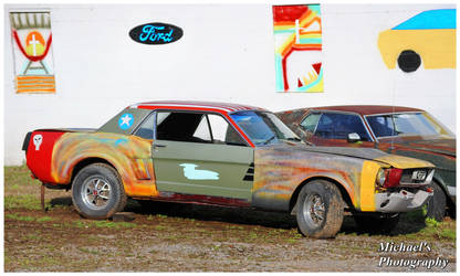 A Multi Color Mustang by TheMan268