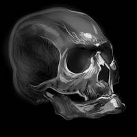 Sketch A Skull by tiredsloth