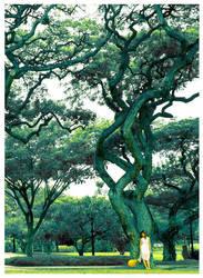 tree by mR-StIck