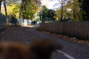 The way ahead. by advdiaboli