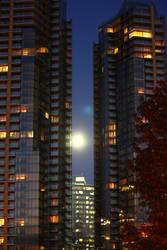 Moonlight by BenjaminTrnka