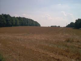 landscapeIII09-08-02 by abfall