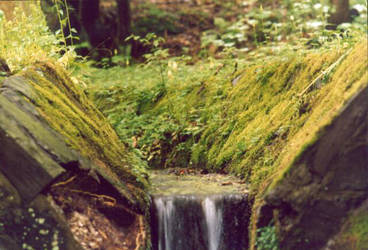 Waterfall surrounded by moss by abfall