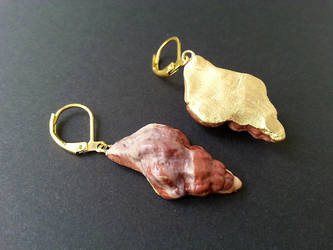 earrings: chocolate sea shells by SprinklesGirl