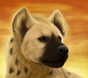 Hyena by Akalu