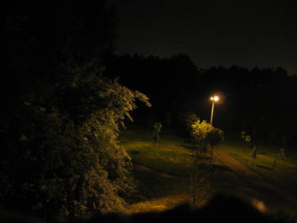 Angler fish lurks in a park by PAStheLoD
