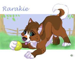 Rarakie wants to play ball by Davuu