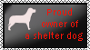 Proud owner of a shelter dog by xpekalx