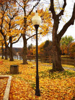 Lamp In A Park During Fall - Clearfield PA by RLS0812